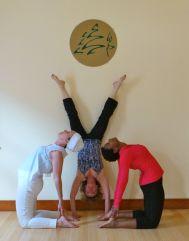 ustrasana and handstand